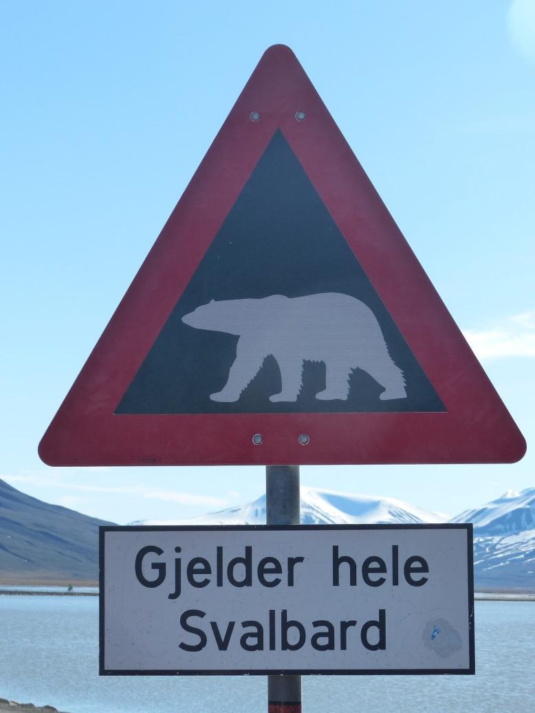 polar-bears-1224491_1920